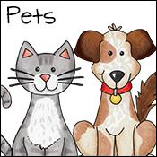 pets activities